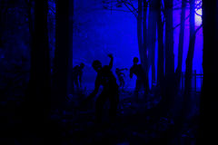 Crowd of hungry zombies in the woods Royalty Free Stock Image