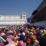 Crowd of indian sikh people in the golden temple, amritsar, india. Sikhs visiting the golden temple as pilgrims. Close to the border to Pakistan in Punjab, India stock photography
