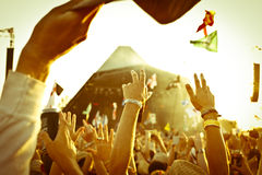 Crowd at Music Festival royalty free stock photo
