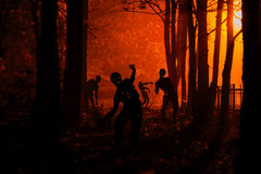 Free Crowd Of Hungry Zombies In The Woods Royalty Free Stock Images - 79703199