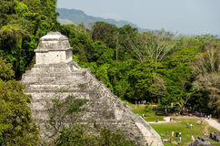 Crowd at Palenque Royalty Free Stock Photos