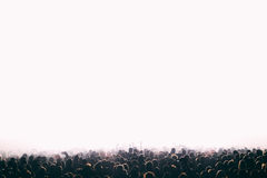 Crowd of people at the concert. Horizontal isolated background Stock Photography