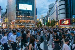 Crowd of people crossing famous Shibuya pedestrian crossing in T Royalty Free Stock Images