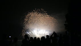 People taking photos beautiful firework background stock video
