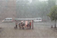 Crowd of people are hiding from heavy rain at a stop in the city. Royalty Free Stock Photography