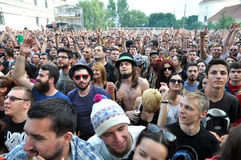 Crowd of people at a live concert Stock Image