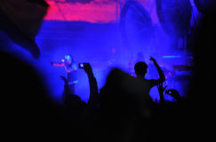 Crowd of people at a live concert Royalty Free Stock Photo