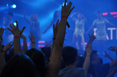 Crowd at a rap concert Stock Images