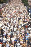 Crowd of Runners Royalty Free Stock Photo
