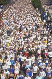 Crowd of Runners in marathon from above Stock Images