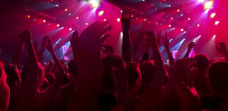 A crowd of spectators at a concert, a rock festival Royalty Free Stock Photography