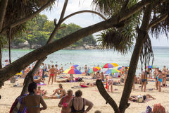 Crowd tourists, sunbed and umbrellas  on the beach Royalty Free Stock Photos