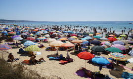 Crowded Beach Royalty Free Stock Photo