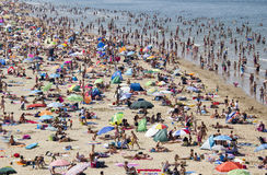 Crowded Beach in Summer Stock Photography