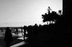 Crowded beach. Waikiki beach on the island of Oahu Stock Photography