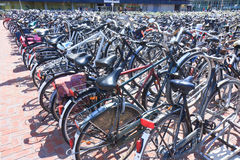Crowded Bicycles Parking at Den Haag Centraal royalty free stock image