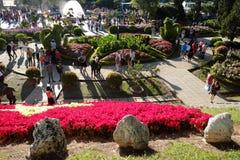 Crowded,  Dalat flower park, festival, spring, tourist Royalty Free Stock Photo