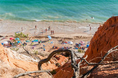 Crowded Falesia Beach seen from the cliff Stock Photography