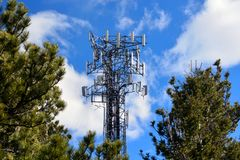Crowded Full Cell Tower on a Sunny Day with Pine Trees stock image