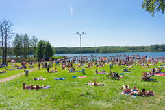 Crowded lake Stock Photography