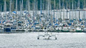 Crowded Port of river sports boats royalty free stock photography