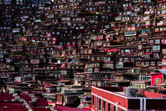 Crowded Red House of Buddhist Academy Stock Images