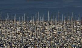 Crowded Sailboat Marina Seattle royalty free stock image