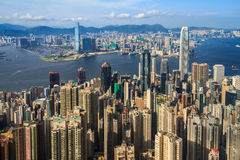 Crowded Tall Buildings Stock Images