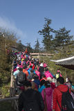 Crowded tourists on mountain Royalty Free Stock Photography