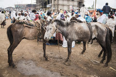 Crowded weekly markent in a village, Etiopia Royalty Free Stock Images
