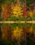 Crowders山国家公园-北卡罗来纳 免版税库存图片