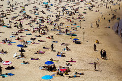 Crowds on Bondi Beach Stock Image