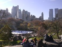 Crowds in central park Royalty Free Stock Images
