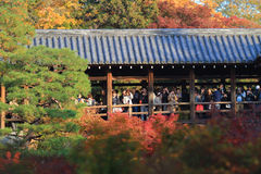 Crowds gather at Tofukuji Temple to celebrate the maple. Crowds gather at Tofukuji Temple to celebrate the autumn maple leave festival in Kyoto, Japan royalty free stock photo
