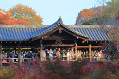 Crowds gather at Tofukuji Temple to celebrate the maple. Crowds gather at Tofukuji Temple to celebrate the autumn maple leave festival in Kyoto, Japan royalty free stock image