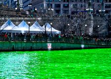 Crowds of people gather along the Chicago River, which is dyed green for St. Patrick`s day. Crowds of people gather along the Chicago River, which is dyed green Royalty Free Stock Photos