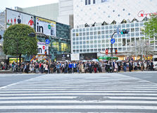Crowds of people at Shibuya Royalty Free Stock Image
