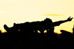 Crowdsurfer Royalty Free Stock Images