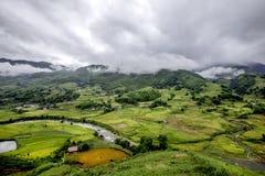 Crowdy ovanför risfältet Arkivbilder