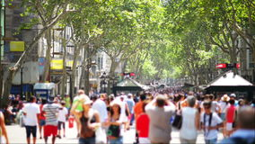 Crowdy Street stock video footage