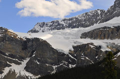 Crowfoot Glacier Royalty Free Stock Photos