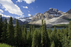 Crowfoot glacier Royalty Free Stock Images