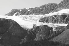 Crowfoot Glacier in Icefield parkway. Alberta. Canada Stock Photos