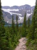 crowfootglaciärtrail Royaltyfri Bild