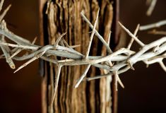 Crown on bible. Detail of a crown of thorns hung on an antique bible book stock photography