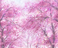 Crown of the blooming trees. Royalty Free Stock Images