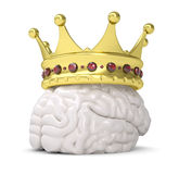 Crown on the brain. Render on a white background Royalty Free Stock Image