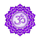 The Crown Chakra Stock Images