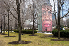 Crown Fountain Stock Photo