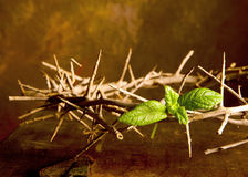 Crown of Jesus. Easter image with Crown of thorns and green leaf of hope stock photography